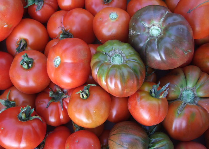 Productos ecológicos de temporada